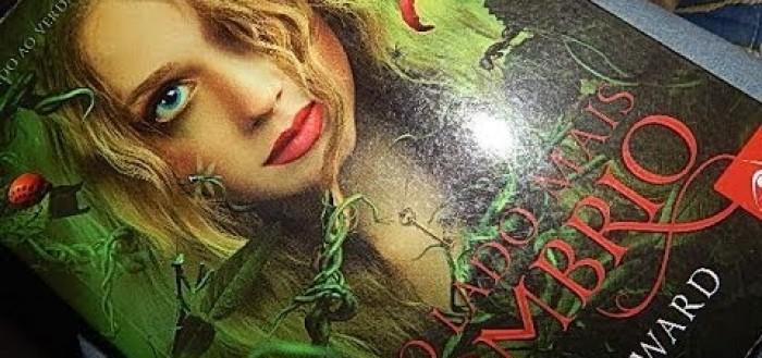 imagem mostrando o livro sobre uma mesa, na capa, uma jovem de cabelos loiros cacheados olhando diretamente para a frente com o rosto levemente abaixado, com uma mecha de cabelo sobre o lado esquerdo do seu rosto, cobrindo um de seus olhos azuis claros penetrantes, , nos lábios um batom coral leve e claro sobrindo um leve sorrido, abaixo o nome do livro escrito em vermelho e letras rebuscadas e mais abaixo o nome do autor em branco